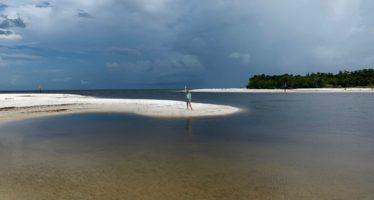 Floride : Pas d'algues rouges cet été mais ça… rgasse !