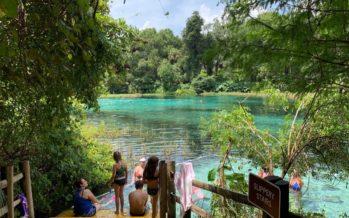 Rainbow Springs : une très belle source bleue près d'Ocala en Floride