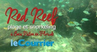 Snorkeling sur la plage de Red Reef à Boca Raton (vidéos de la Floride)